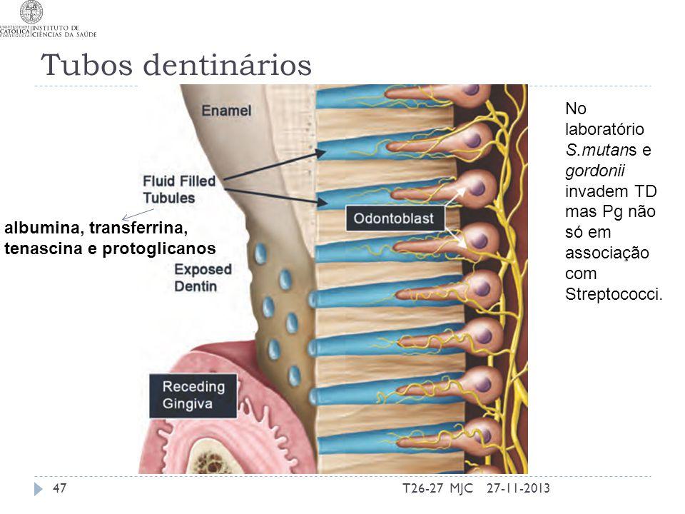Tubos dentinários No laboratório S.mutans e gordonii invadem TD mas Pg não só em associação com Streptococci.
