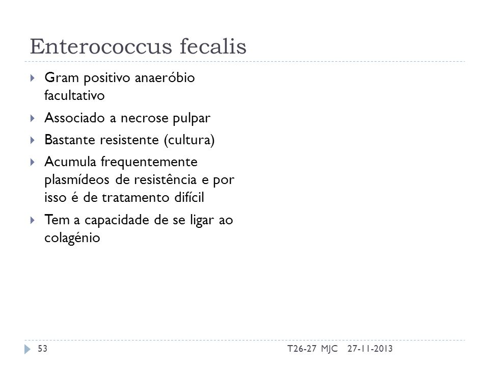 Enterococcus fecalis Gram positivo anaeróbio facultativo