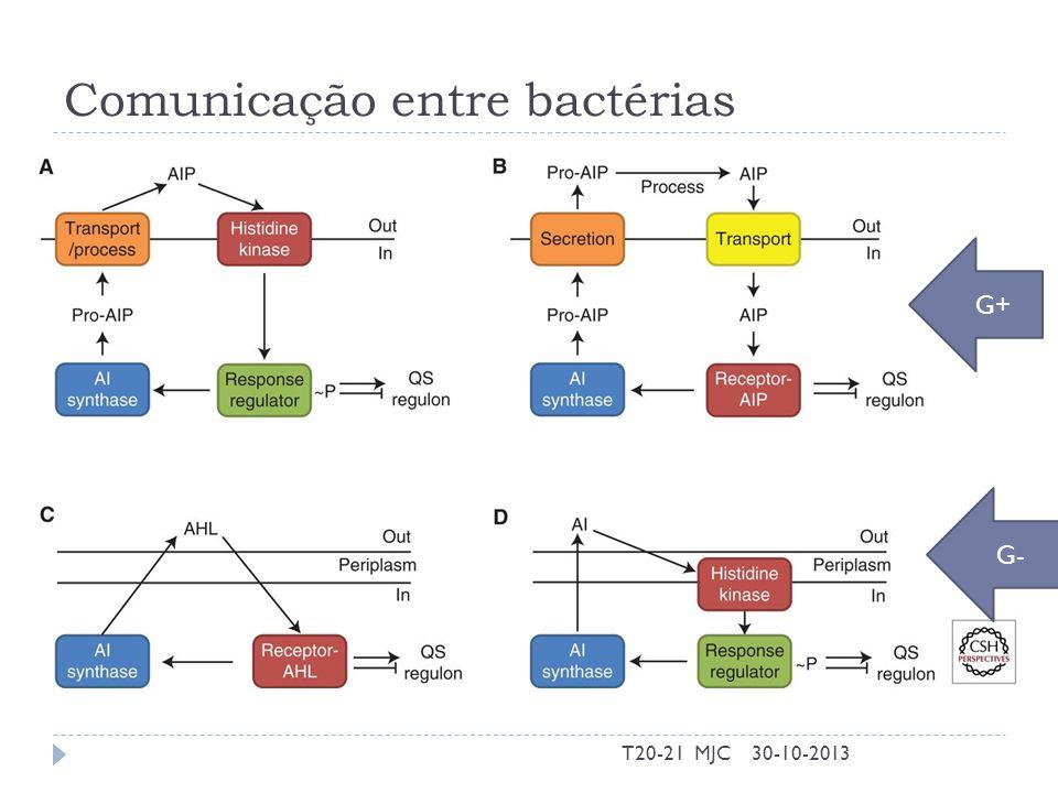 Comunicação entre bactérias