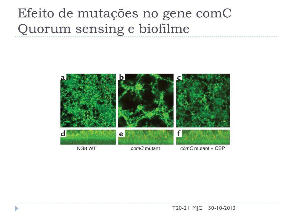 Efeito de mutações no gene comC Quorum sensing e biofilme