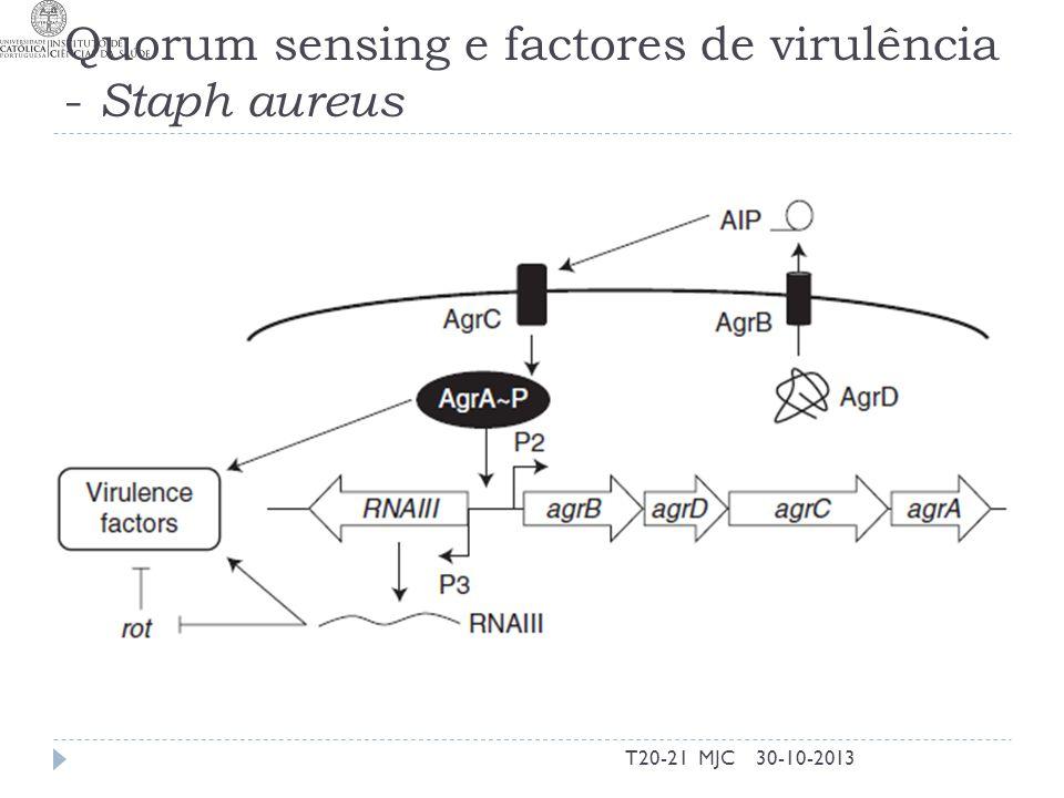 Quorum sensing e factores de virulência - Staph aureus