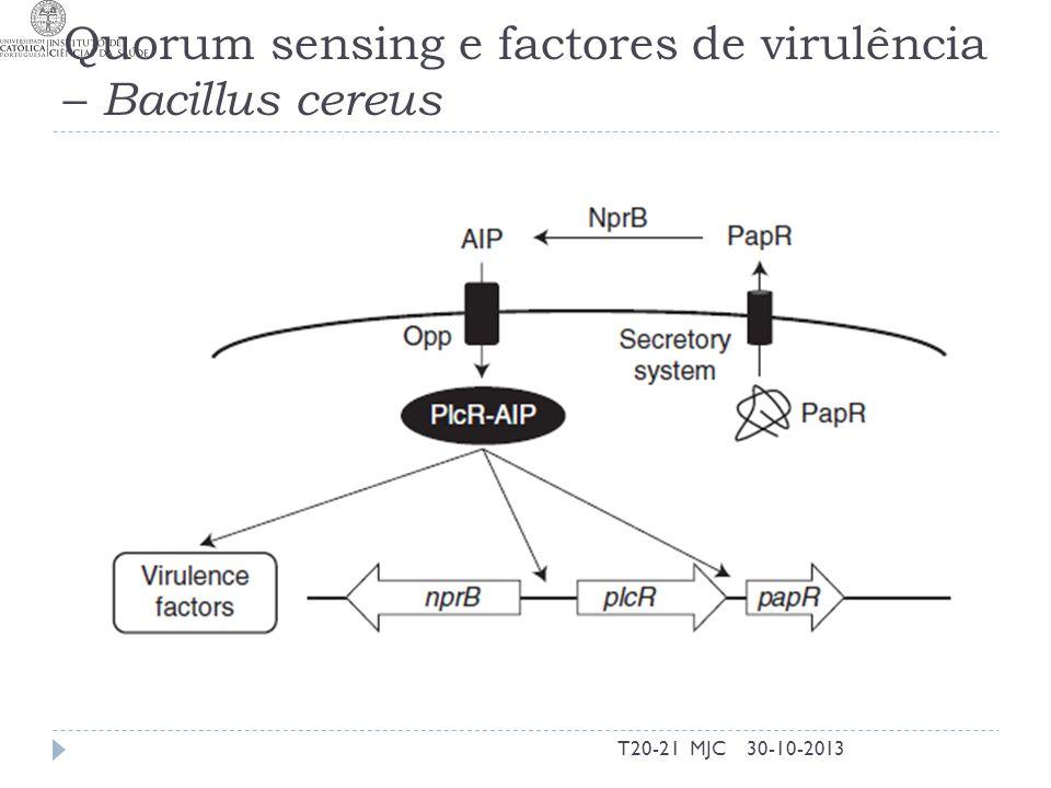 Quorum sensing e factores de virulência – Bacillus cereus