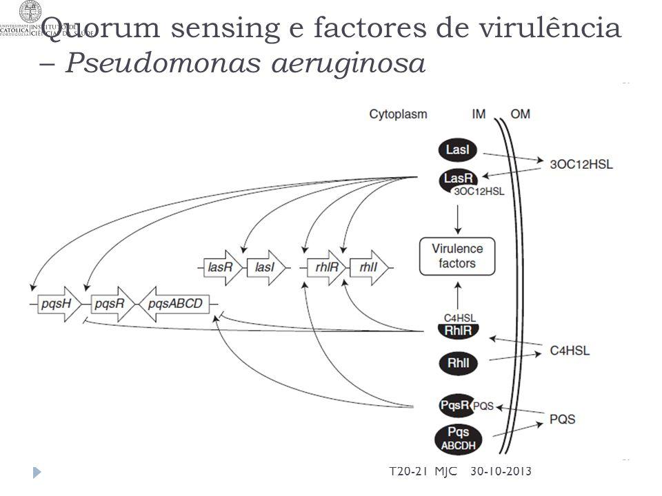 Quorum sensing e factores de virulência – Pseudomonas aeruginosa