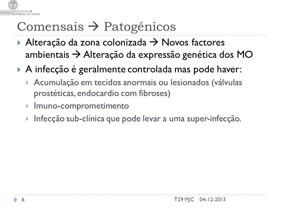 Comensais  Patogénicos