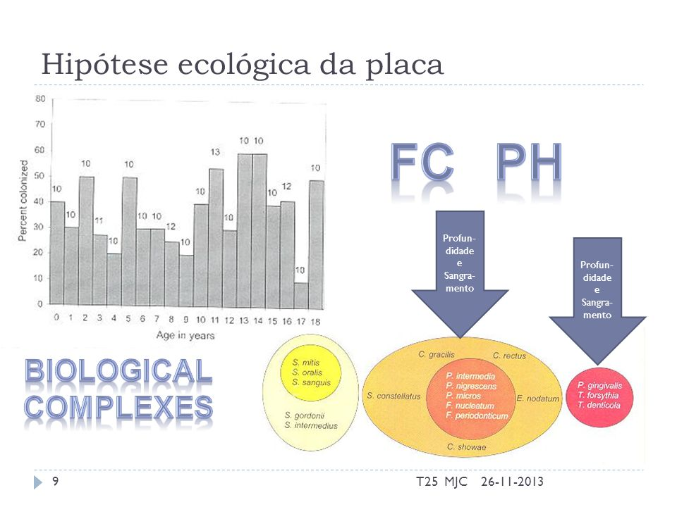 Hipótese ecológica da placa