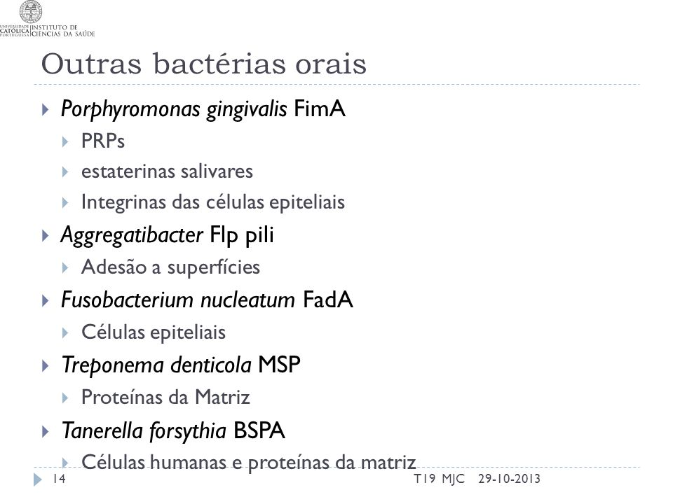 Outras bactérias orais