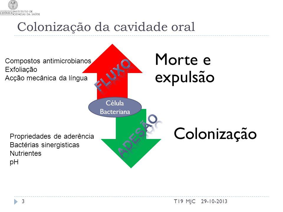 Colonização da cavidade oral