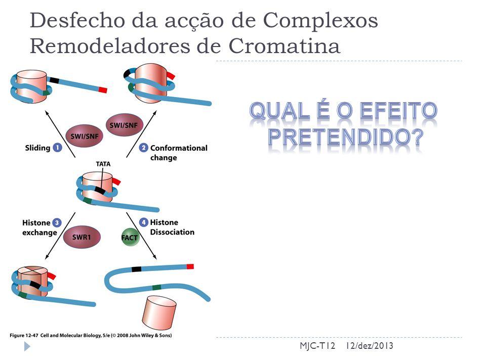 Desfecho da acção de Complexos Remodeladores de Cromatina