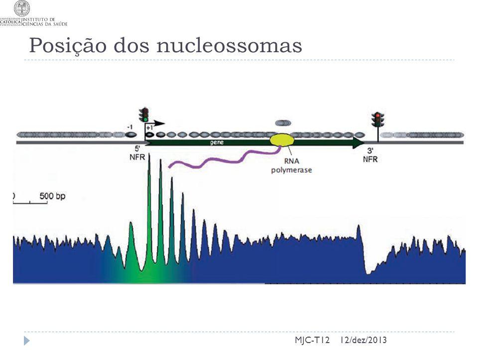 Posição dos nucleossomas