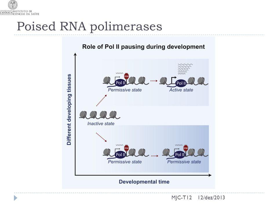 Poised RNA polimerases