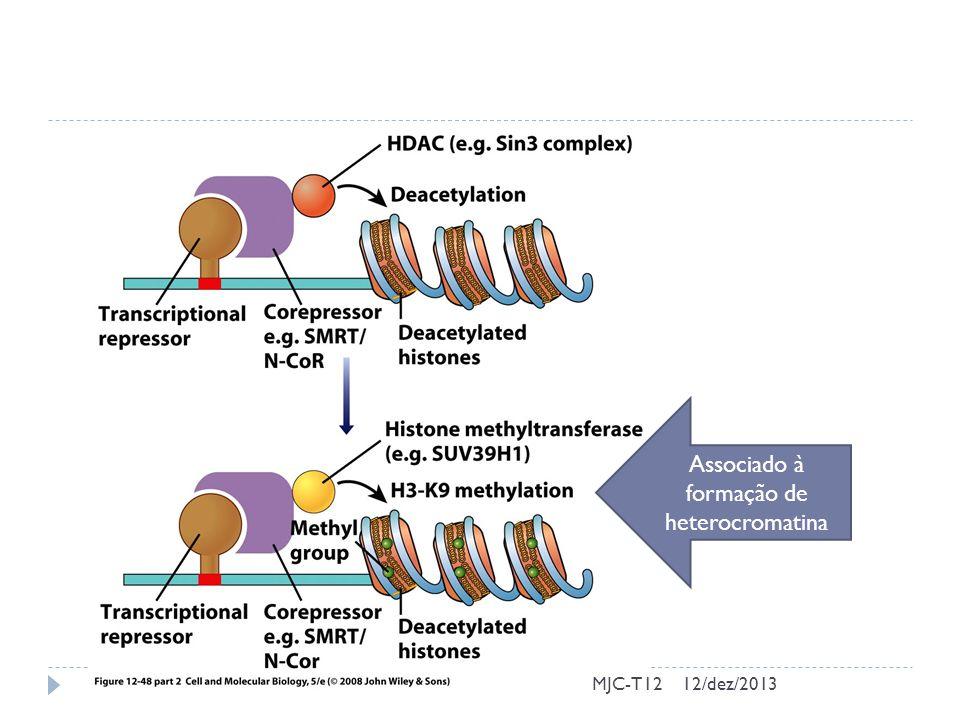 Associado à formação de heterocromatina