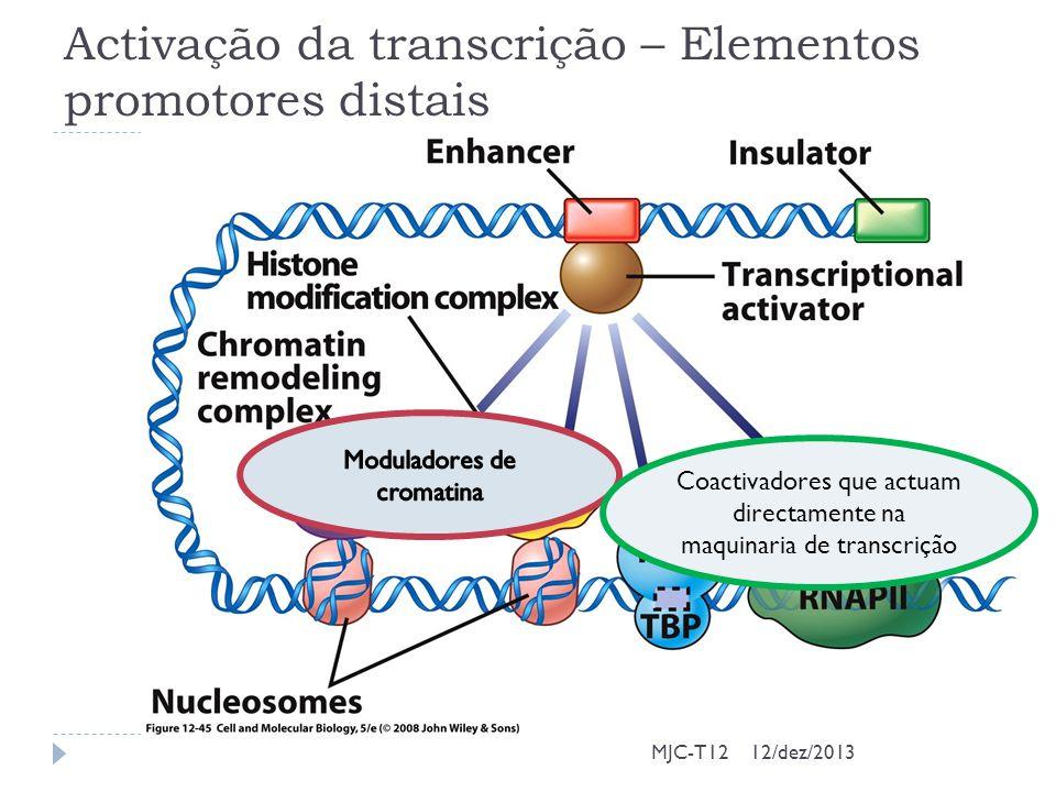 Activação da transcrição – Elementos promotores distais