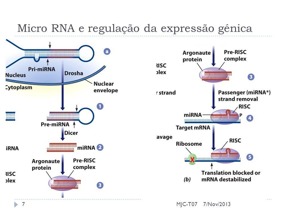Micro RNA e regulação da expressão génica