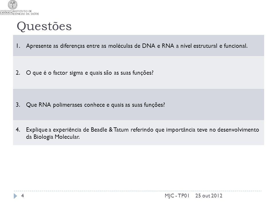 Questões Apresente as diferenças entre as moléculas de DNA e RNA a nível estrutural e funcional. O que é o factor sigma e quais são as suas funções