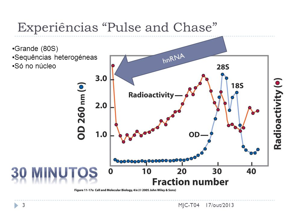 Experiências Pulse and Chase