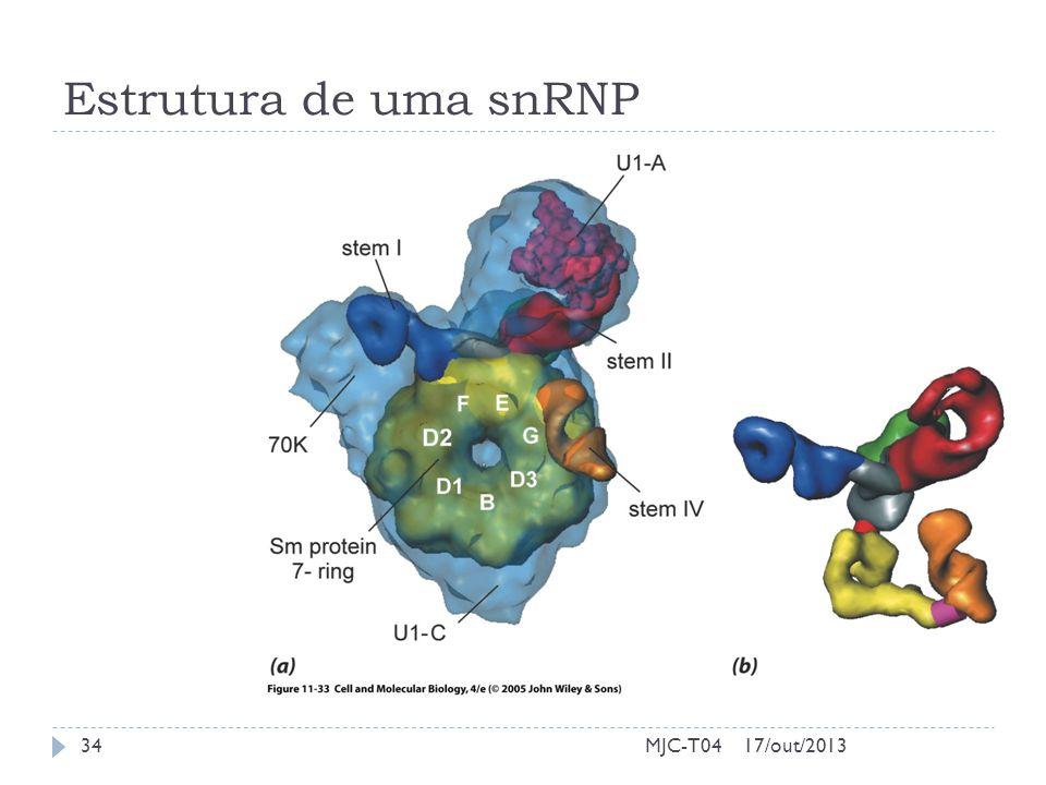 Estrutura de uma snRNP MJC-T04 17/out/2013