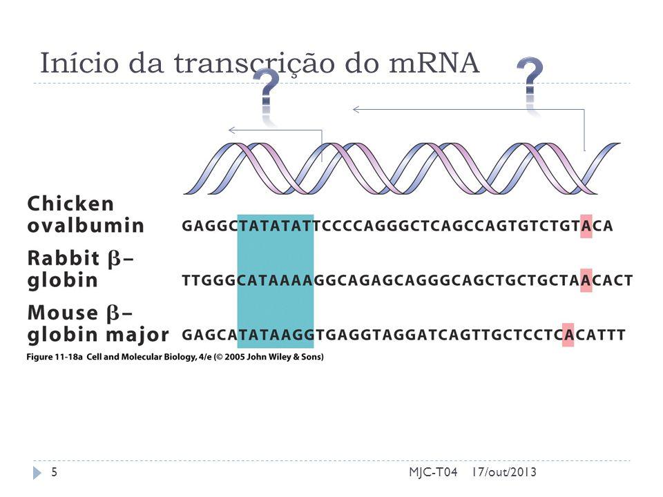 Início da transcrição do mRNA