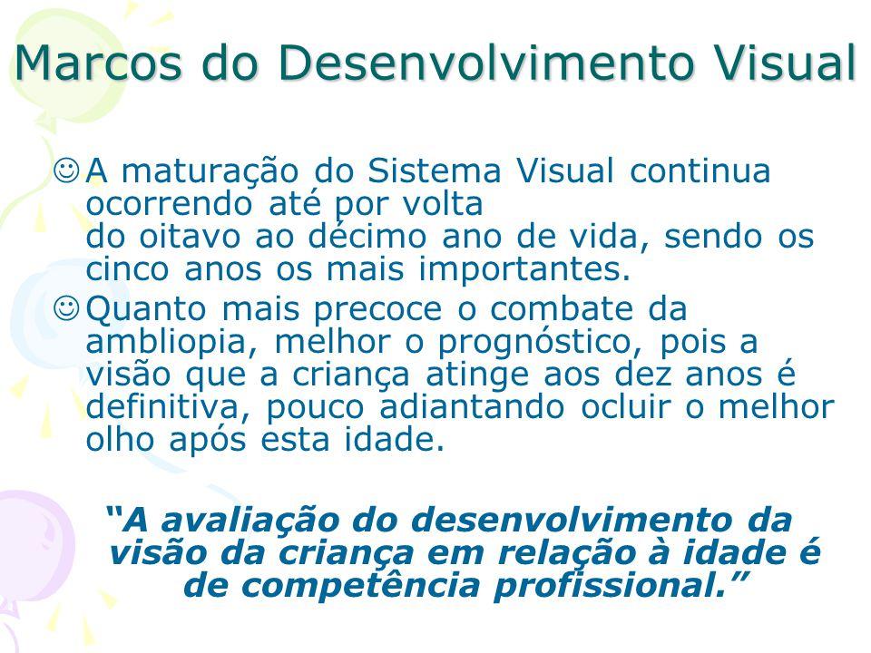 Marcos do Desenvolvimento Visual