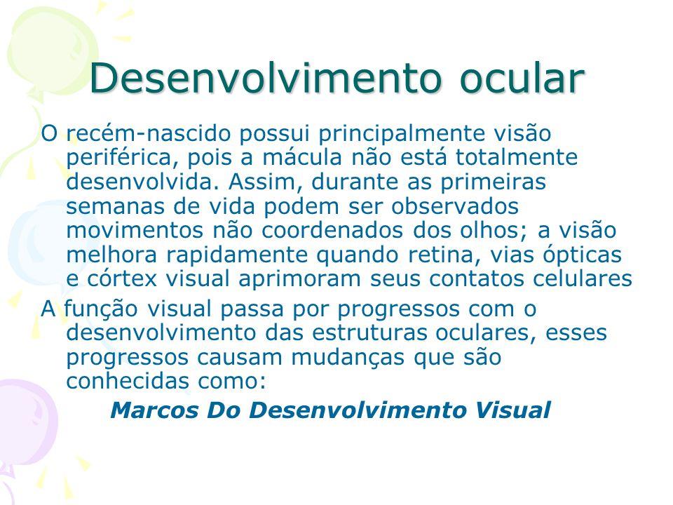 Desenvolvimento ocular