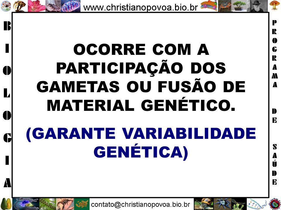 OCORRE COM A PARTICIPAÇÃO DOS GAMETAS OU FUSÃO DE MATERIAL GENÉTICO.