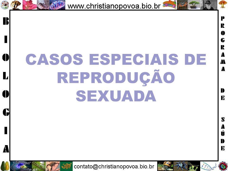 CASOS ESPECIAIS DE REPRODUÇÃO SEXUADA