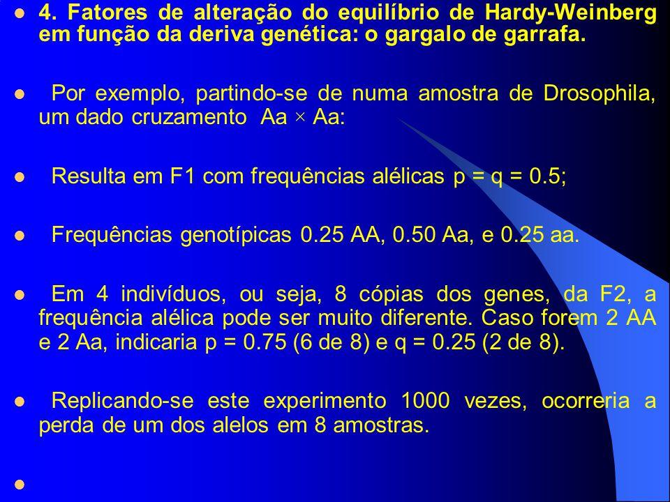 4. Fatores de alteração do equilíbrio de Hardy-Weinberg em função da deriva genética: o gargalo de garrafa.