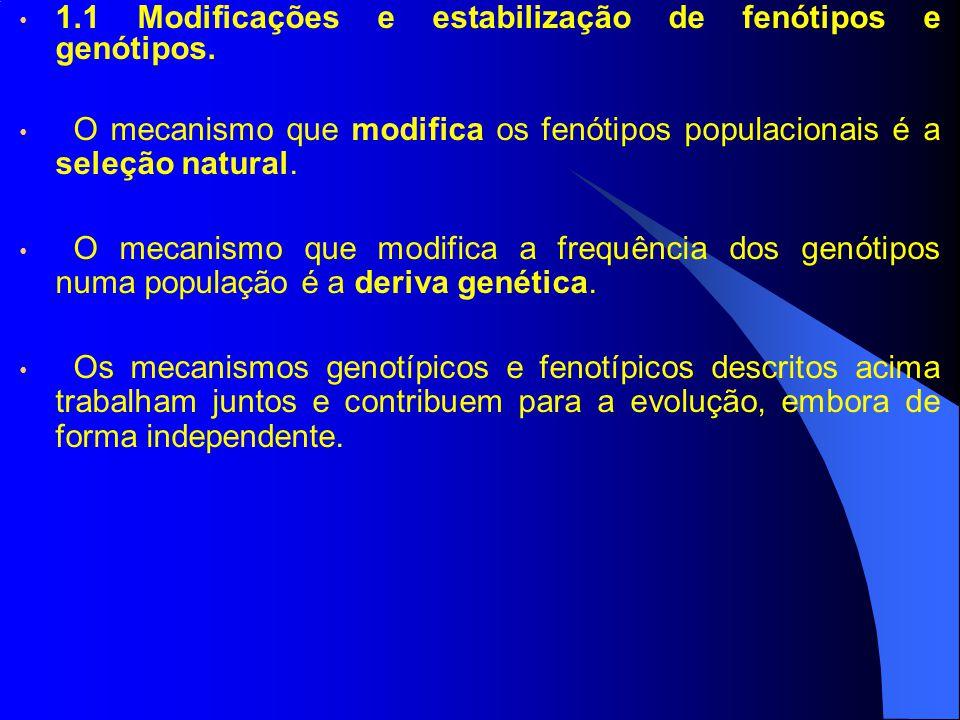 1.1 Modificações e estabilização de fenótipos e genótipos.