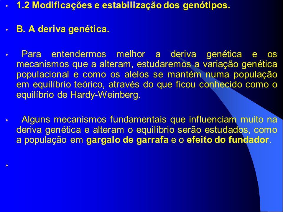 1.2 Modificações e estabilização dos genótipos.