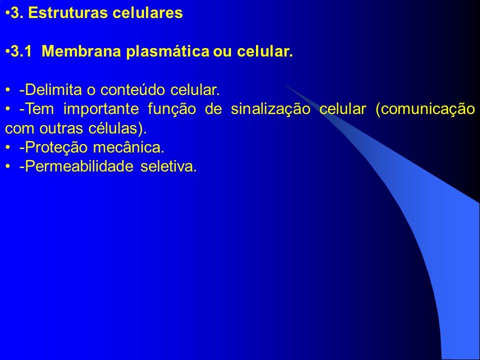 3. Estruturas celulares 3.1 Membrana plasmática ou celular. -Delimita o conteúdo celular.