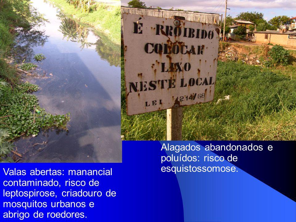 Alagados abandonados e poluídos: risco de esquistossomose.