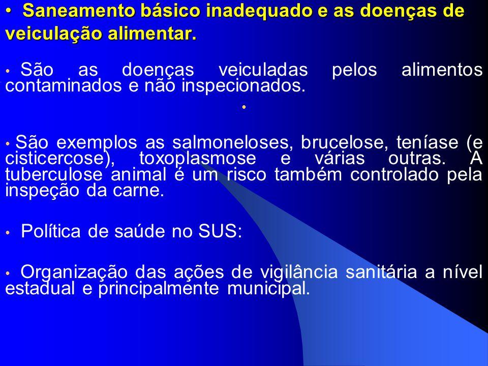Saneamento básico inadequado e as doenças de veiculação alimentar.