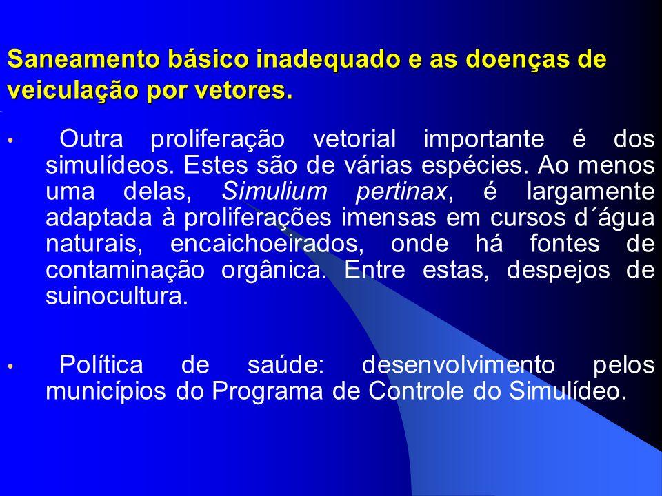Saneamento básico inadequado e as doenças de veiculação por vetores.