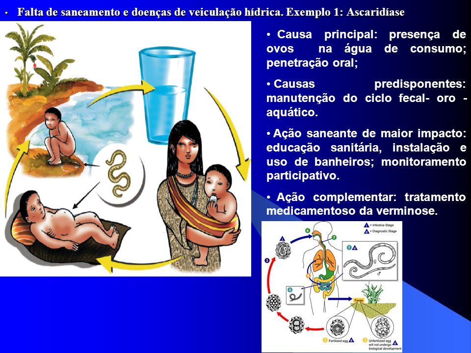 Falta de saneamento e doenças de veiculação hídrica