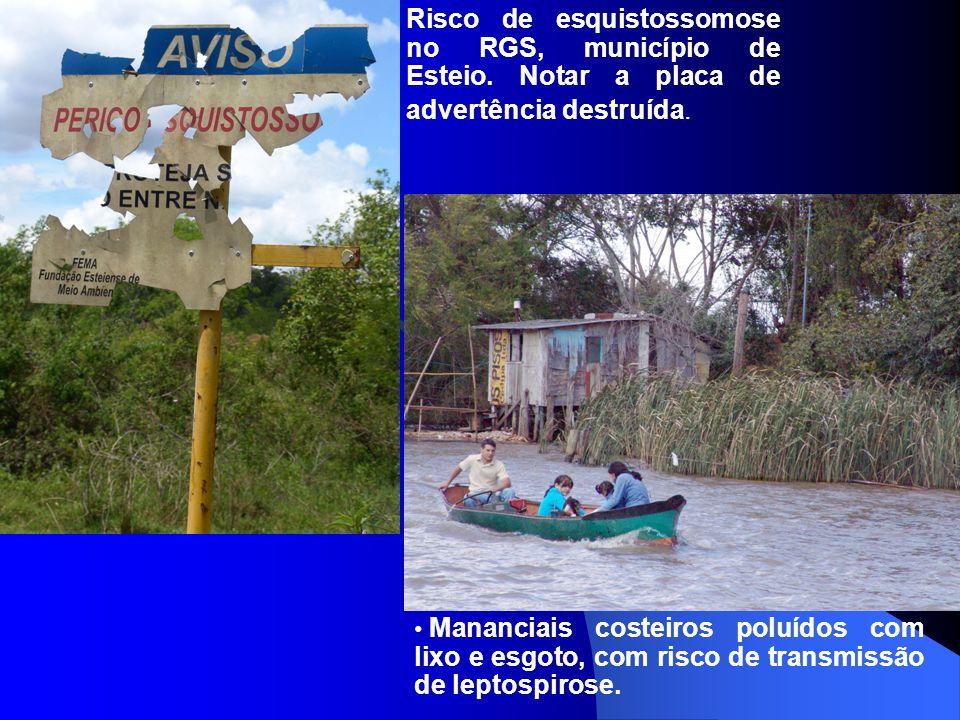 Risco de esquistossomose no RGS, município de Esteio