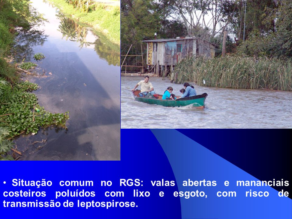 Situação comum no RGS: valas abertas e mananciais costeiros poluídos com lixo e esgoto, com risco de transmissão de leptospirose.
