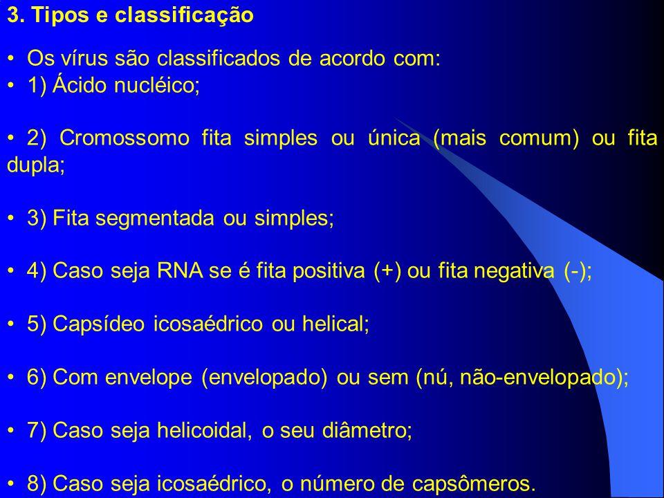 3. Tipos e classificação Os vírus são classificados de acordo com: 1) Ácido nucléico;