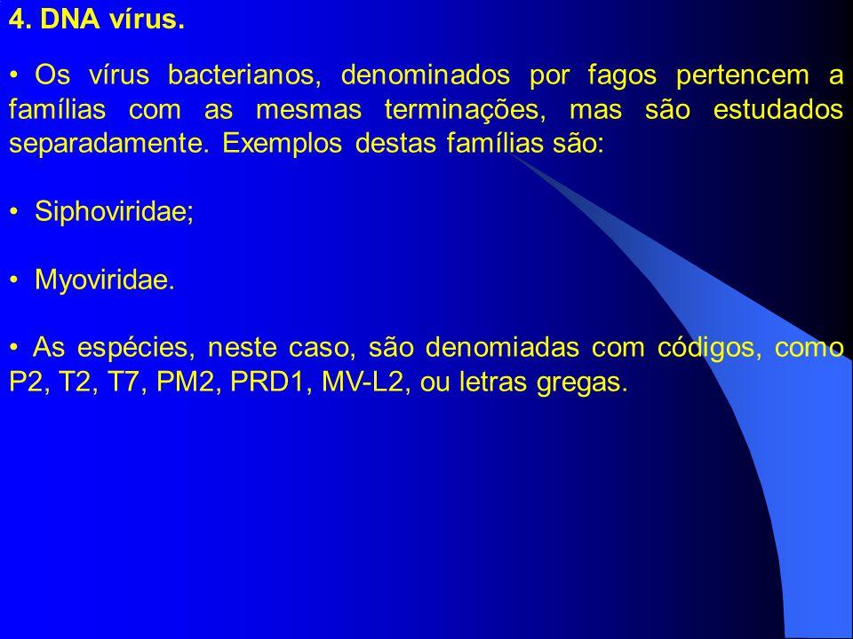 4. DNA vírus.