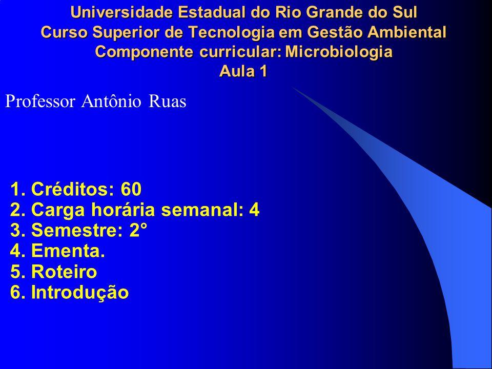 Professor Antônio Ruas