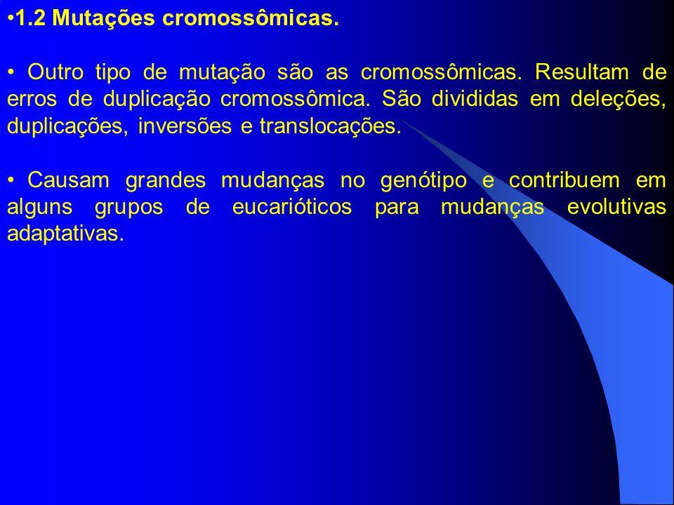 1.2 Mutações cromossômicas.