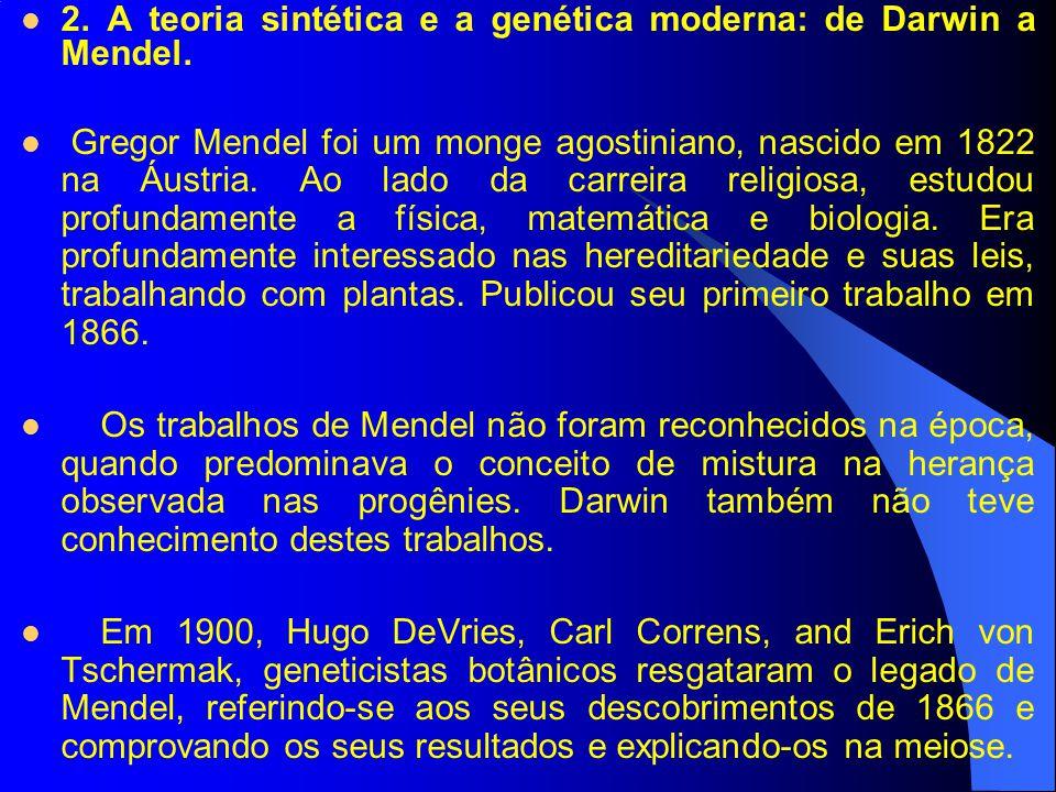 2. A teoria sintética e a genética moderna: de Darwin a Mendel.