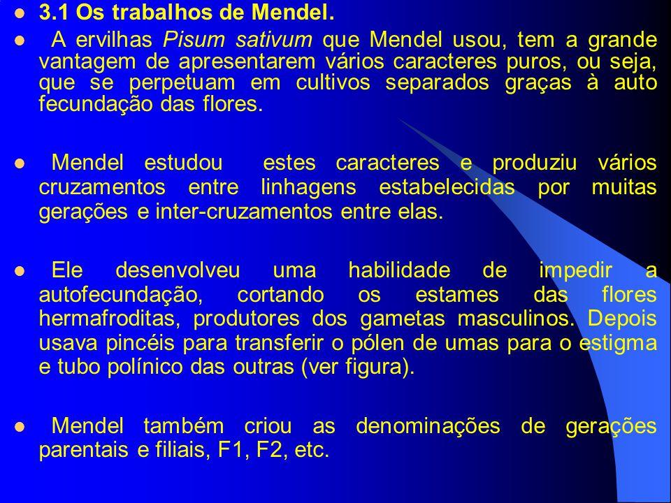 3.1 Os trabalhos de Mendel.