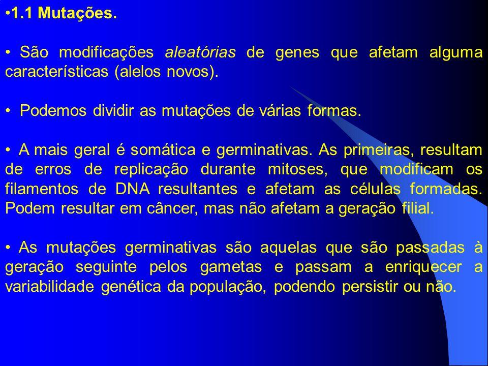 1.1 Mutações. São modificações aleatórias de genes que afetam alguma características (alelos novos).