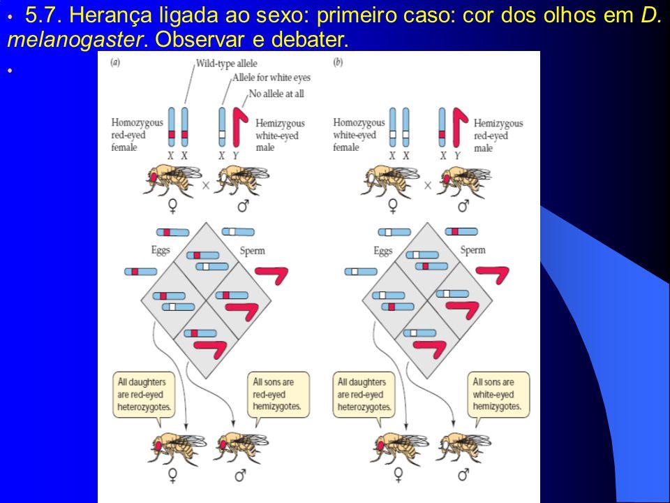 5. 7. Herança ligada ao sexo: primeiro caso: cor dos olhos em D