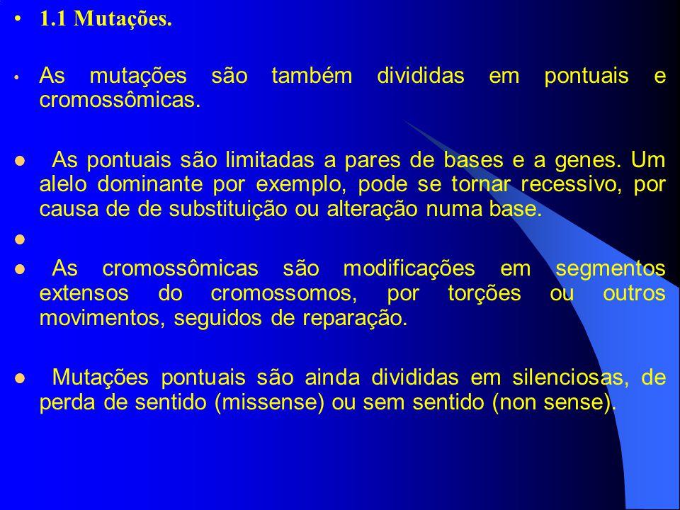 1.1 Mutações. As mutações são também divididas em pontuais e cromossômicas.