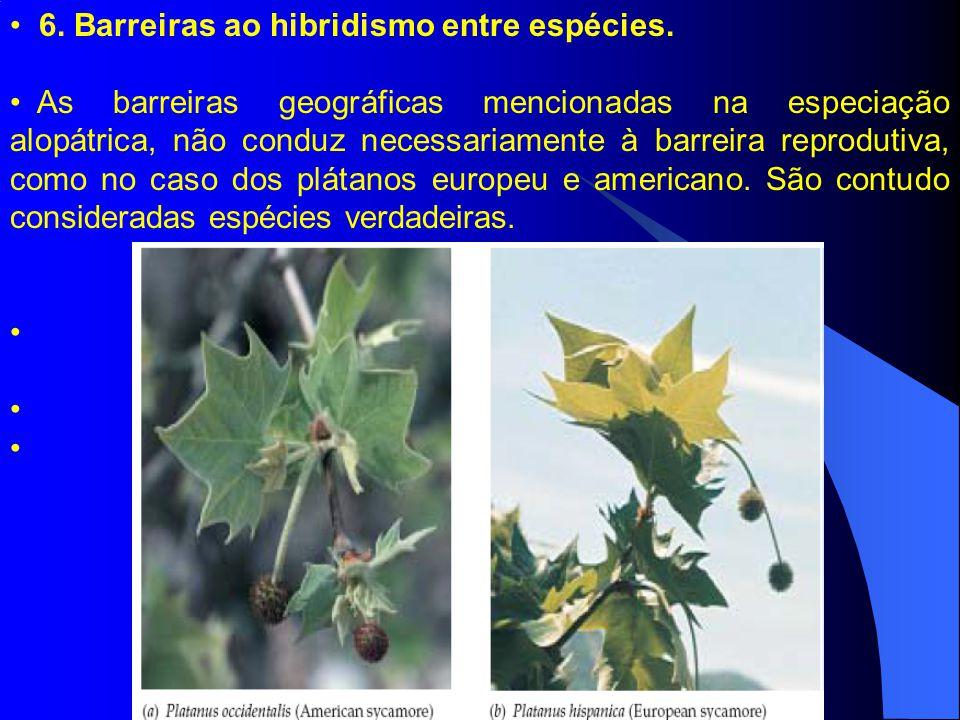 6. Barreiras ao hibridismo entre espécies.