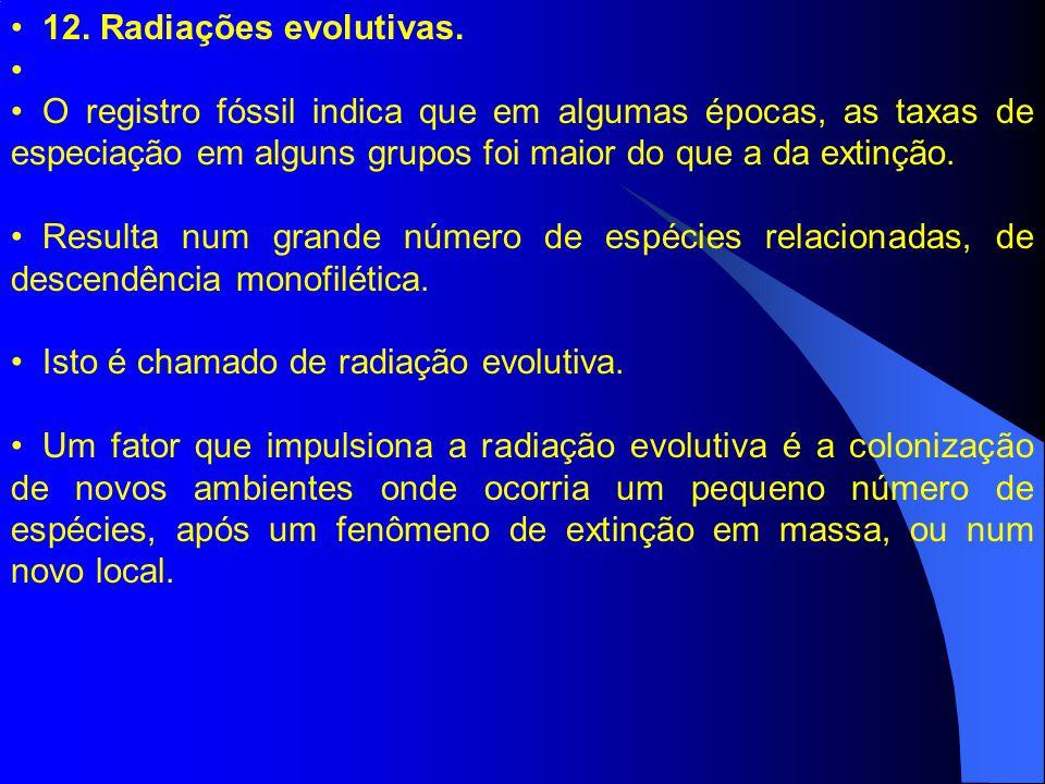 12. Radiações evolutivas. O registro fóssil indica que em algumas épocas, as taxas de especiação em alguns grupos foi maior do que a da extinção.