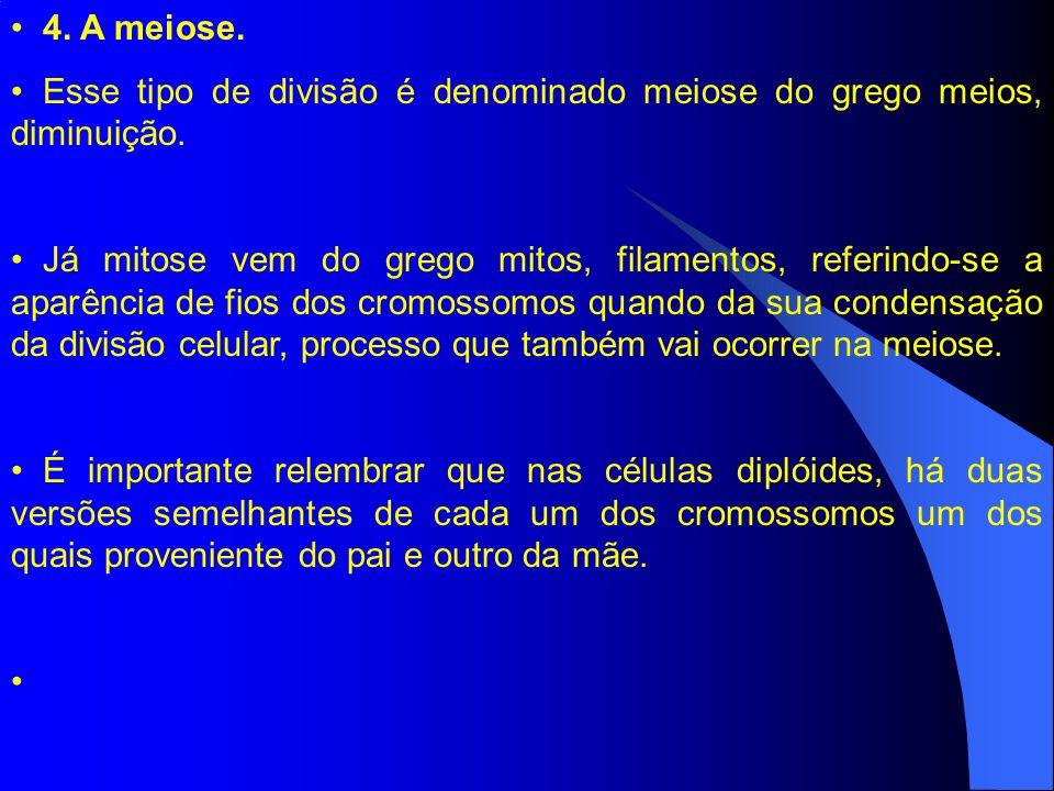 4. A meiose. Esse tipo de divisão é denominado meiose do grego meios, diminuição.