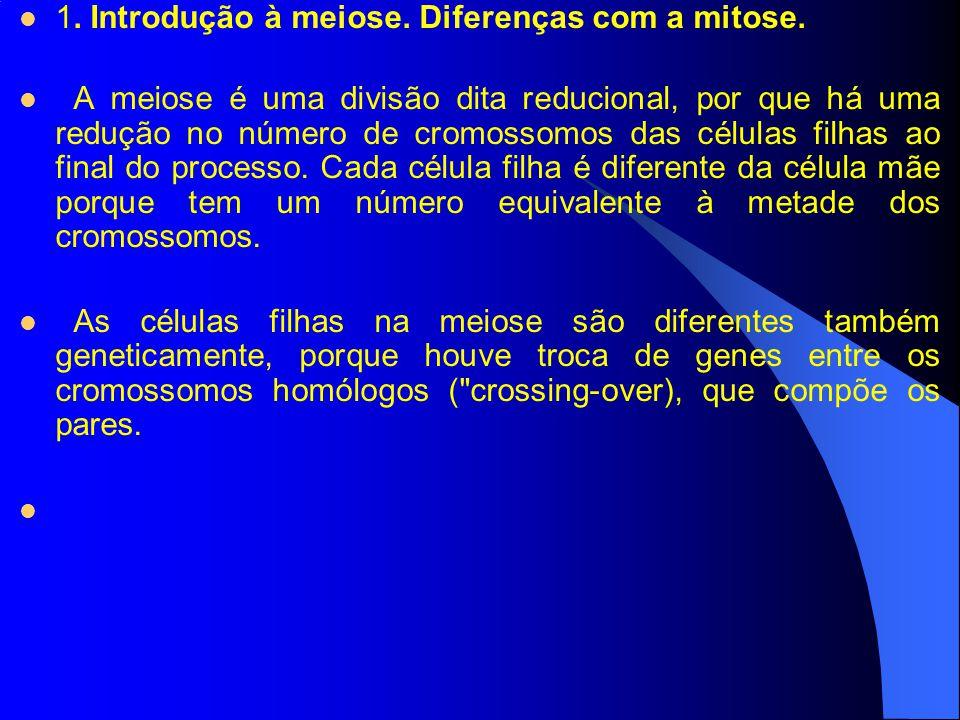 1. Introdução à meiose. Diferenças com a mitose.