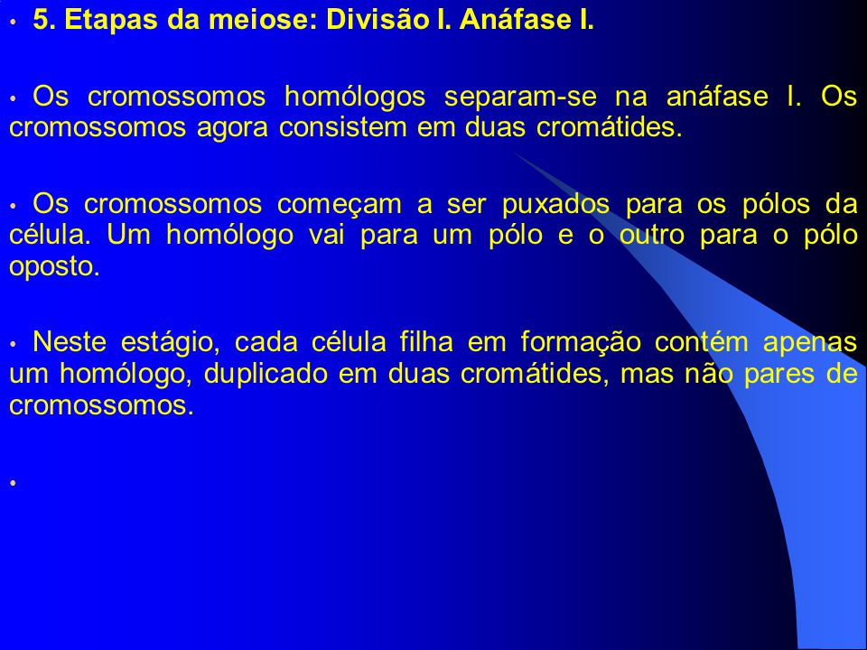 5. Etapas da meiose: Divisão I. Anáfase I.