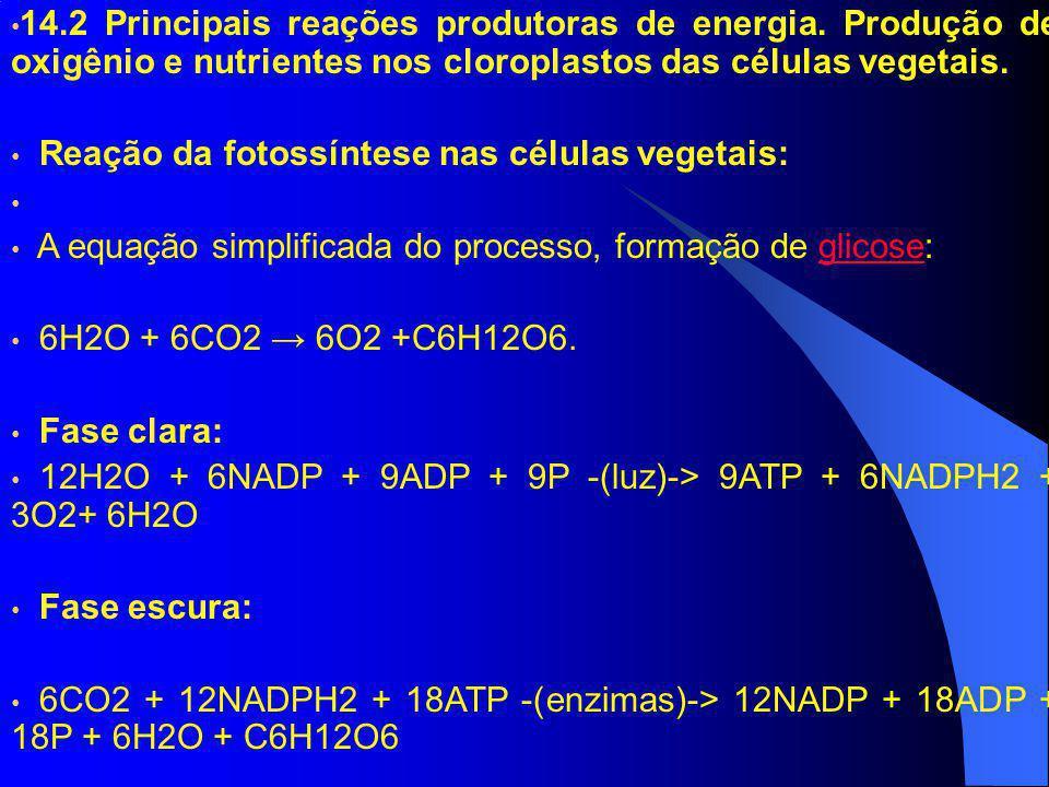 14. 2 Principais reações produtoras de energia